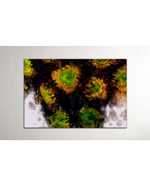 Zoanthus Colony - Water art
