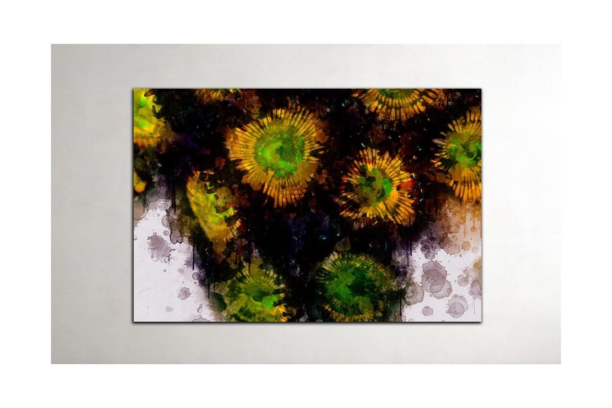 Zoanthus - water art
