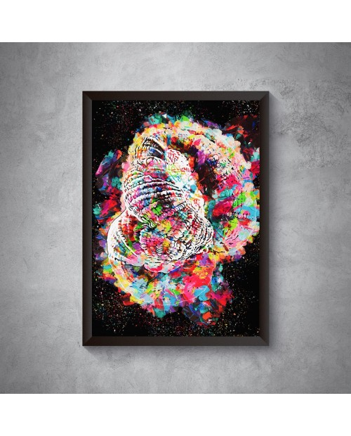 Rainbow Goni Poster