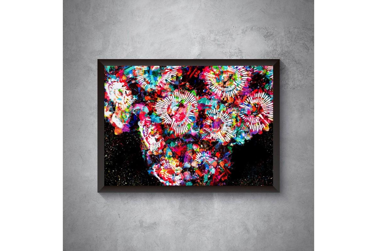 Rainbow Zoanthus – plakat