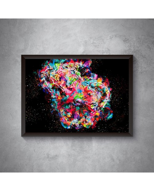 Rainbow Goniastrea -  plakat