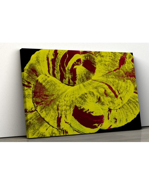 Trachyphyllia marine coral - Photo image printed on canvas