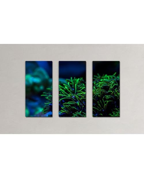 Morski trawnik - wieloelementowy fotoobraz na płótnie